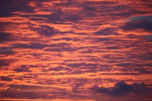 Sunsets to remember a plenty !
